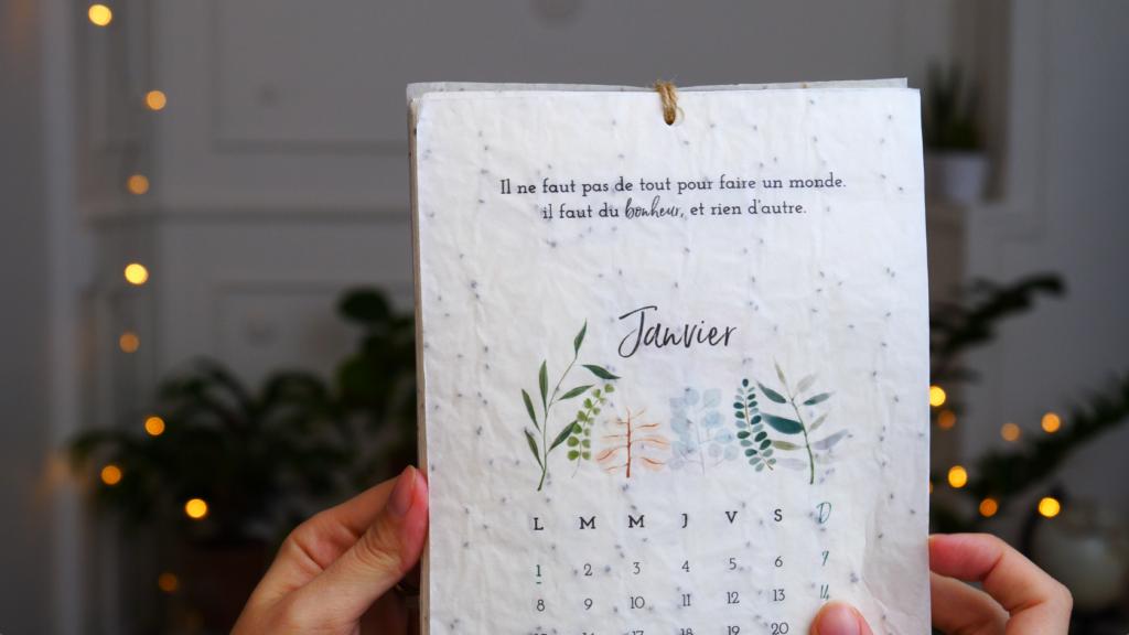 Growing Paper calendrier idée cadeau écologique