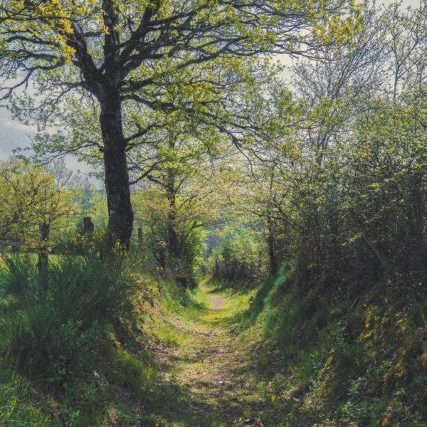 Sentiers de l'imaginaire Murols Aveyron world me now